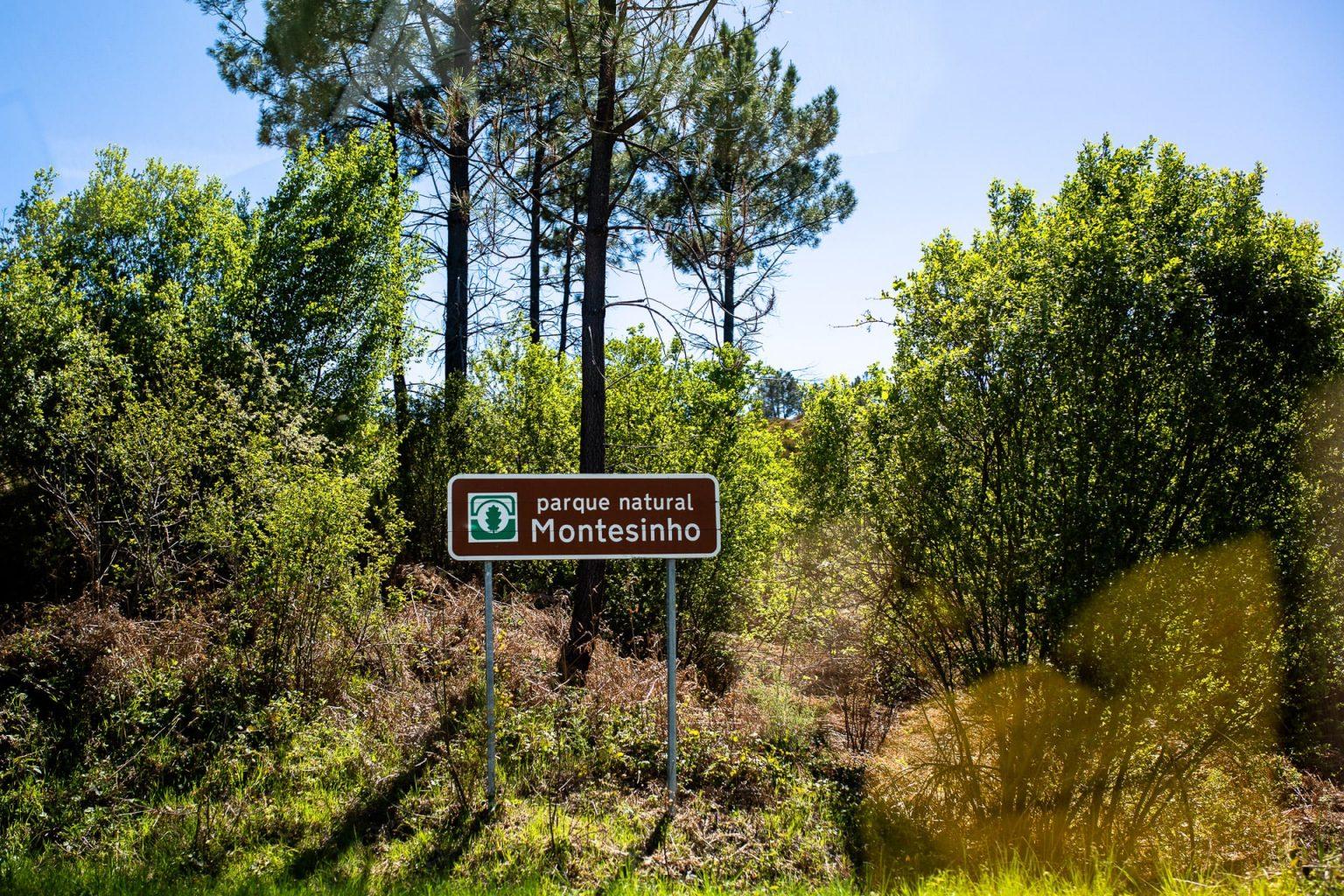 Parque Natural Montesinho En Van Vw Aménagé