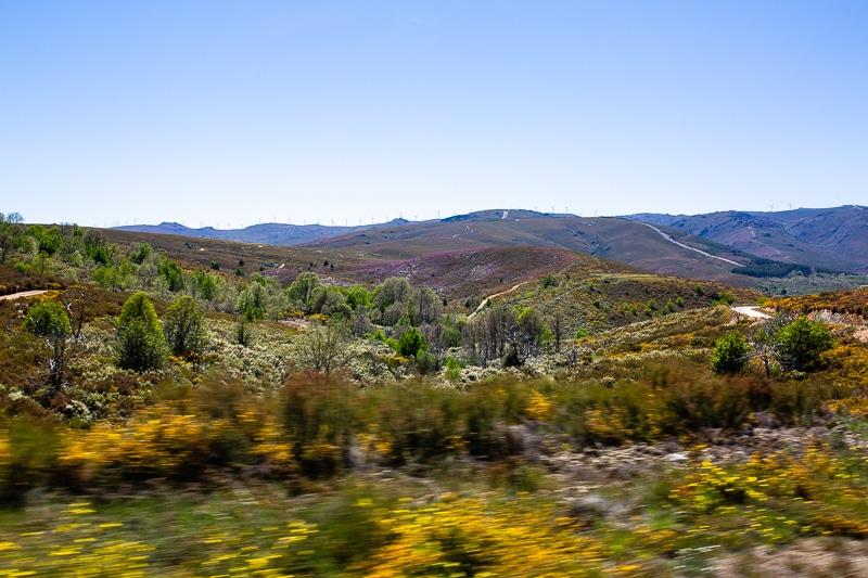 Sur La Route Du Portugal En Van Aménagé Vw California