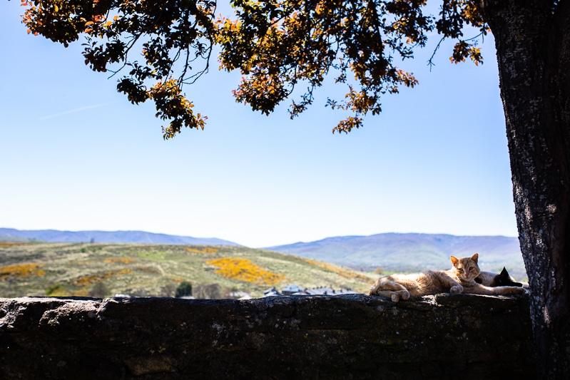 Sur La Route Du Portugal En Van Aménagé