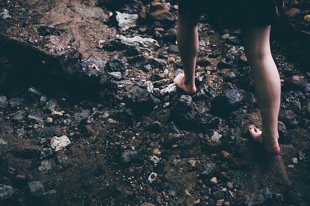 sensoriel-forêt-nature