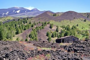 Mount Etna With A Campervan
