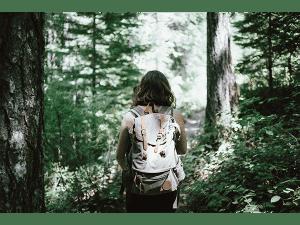 Trail Format Ok