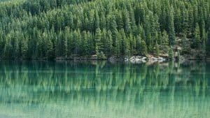 Lac Vert Van