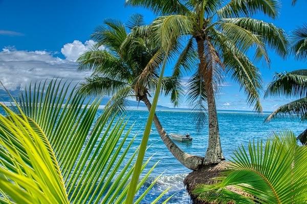 vignette tahiti en 4 jours en van aménagé