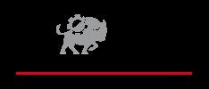 Derichebourg Logo
